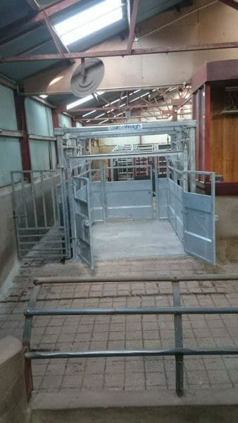 The New Cattle Mart Weighbridge at Kilrea Mart